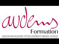 AVDEMS FORMATION